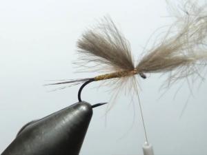 Selecteer een aantal veren, leg de punten goed op elkaar en bind deze op de haak in. Laat het eind van de 'vleugel' ongeveer gelijk lopen met het begin van de staart. Zet de veren vast door de draad voor en achter de vleugel te binden.  Til de stam van de veren iets op en bind de vlieg af (whipfinish). Knip de stam af , er ontstaat een kopje... Klaar is de vlieg.