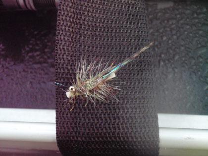 Deze tubefly deed zijn werk.